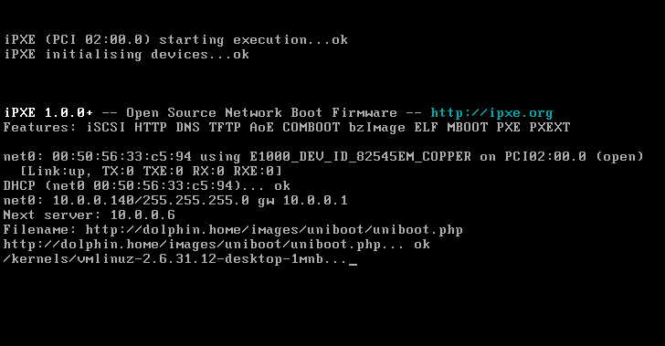 VMware using an iPXE ROM